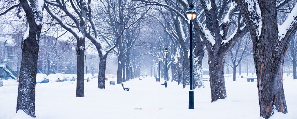 Parc Laurier sous la neige à Montréal