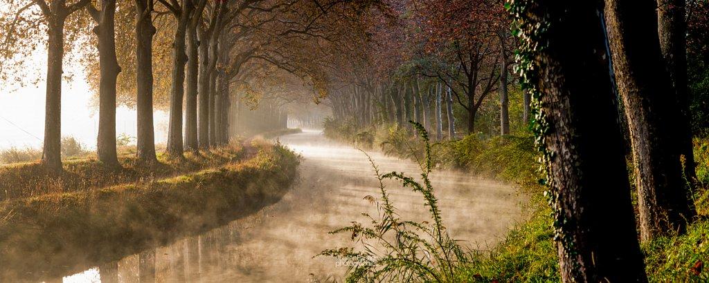 Canal du Midi dans la brume